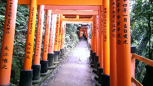 Fushimi Inari Shrine (4)-434